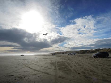 Cars, Oreti Beach, New Zealand