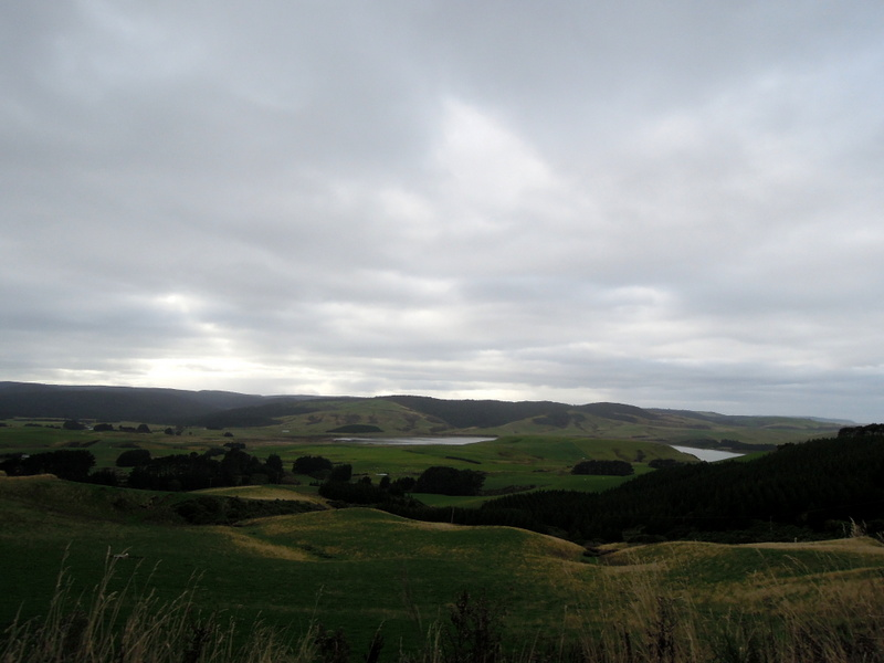 Overcast in the Catlins, South Island, New Zealand
