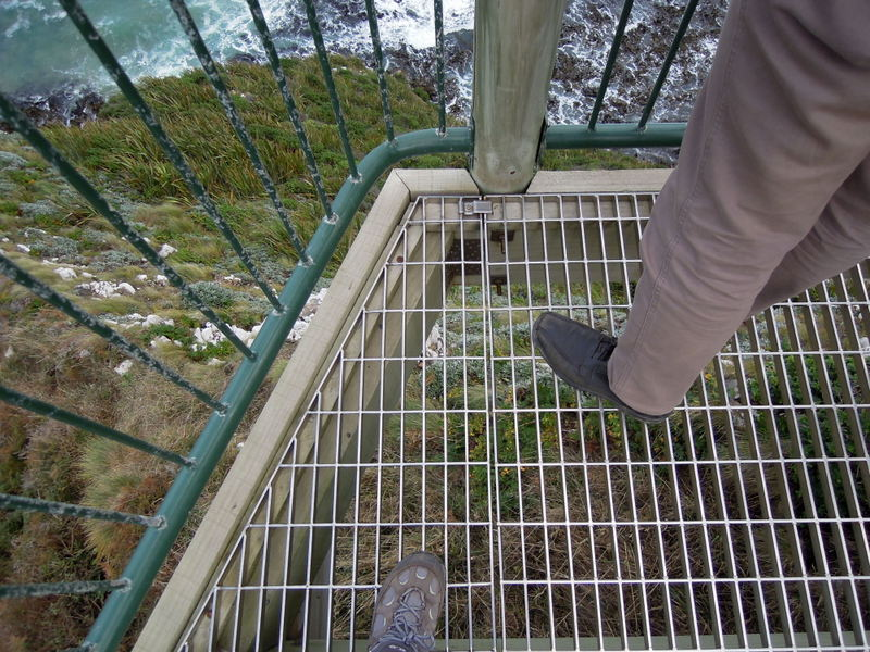 Gridded observation deck, Nugget Point, New Zealand