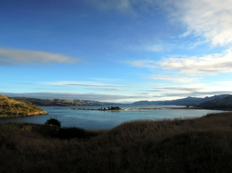 View from road to the Royal Albatross Centre, Otago Peninsula, New Zealand