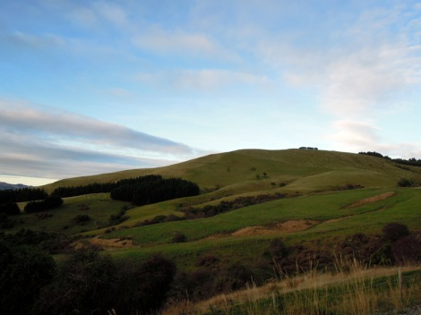 Late afternoon hills on the road to Larnach Castle, New Zealand