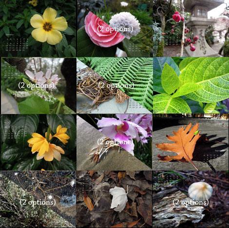 Botanicalthumbnails
