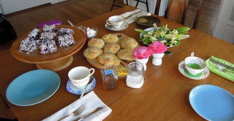 Set table with lamingtons, scones, camellias