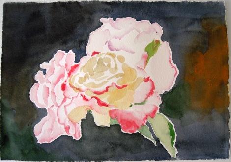 2014 Apr 21 - Roses