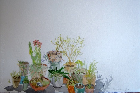May 26 - Deck garden