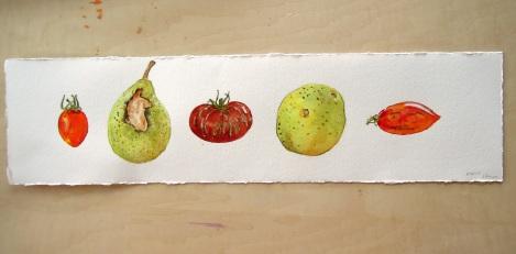 Aug 12 - Tomato pear