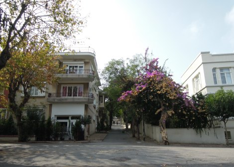 Bougainvillea and old buildings, Heybeliada, Princes Islands, Istanbul