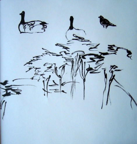 Geese and treetops, by Lisa Hsia