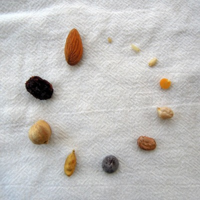 Seeds, nuts, legumes, etc, arranged in a circle on a white tea towel