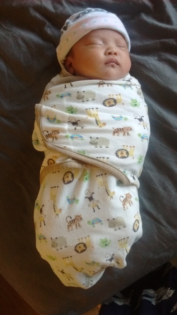 Three-week-old Ada all swaddled up