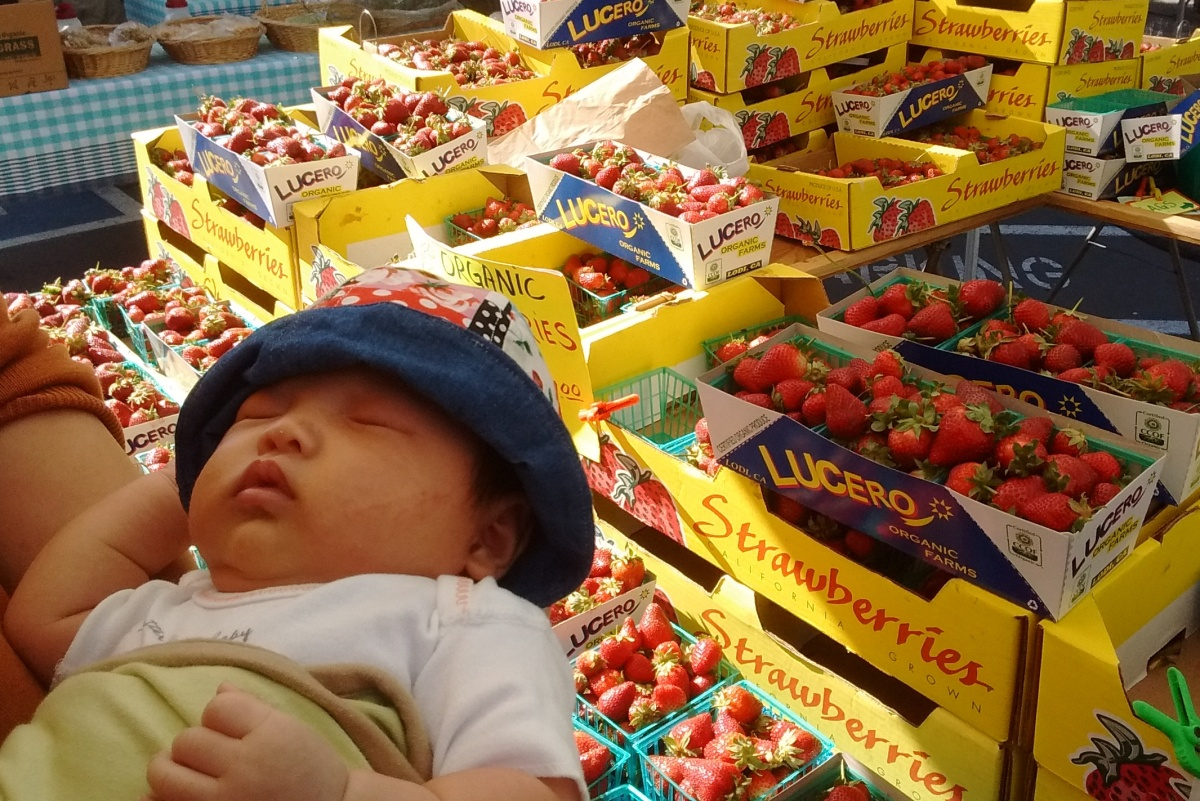 Five-week-old Ada at a strawberry stand
