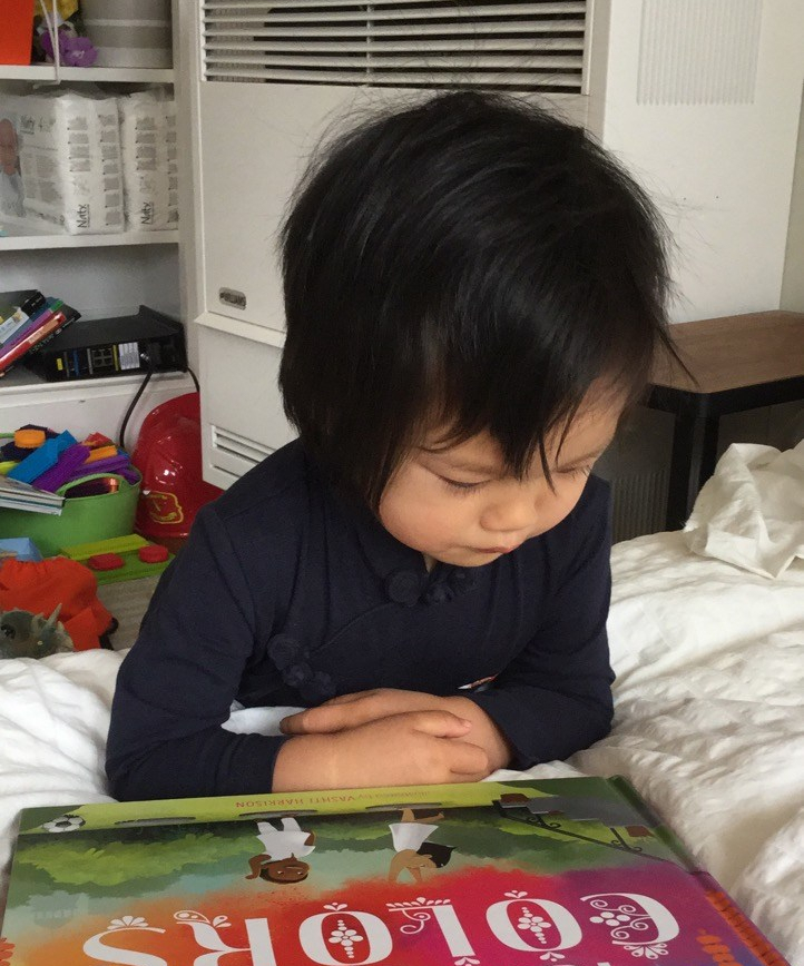 Toddler studying a picture book