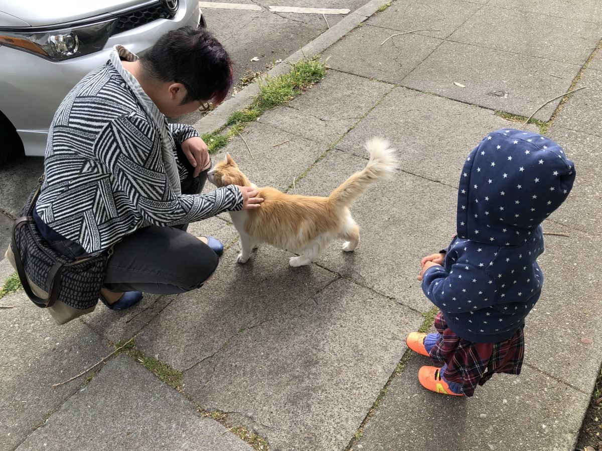 Parent and toddler petting a cat