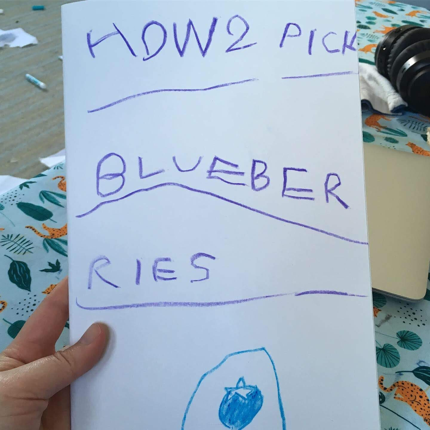 A child's drawing that says HOW2 PICK BLUEBER RIES