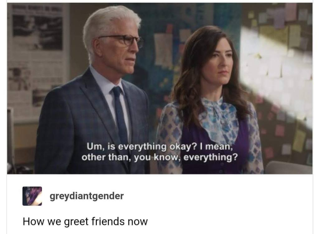 "Meme: ""Um, is everything okay? I mean, other than, you know, everything?"" Greydiantgender: How we greet friends now"