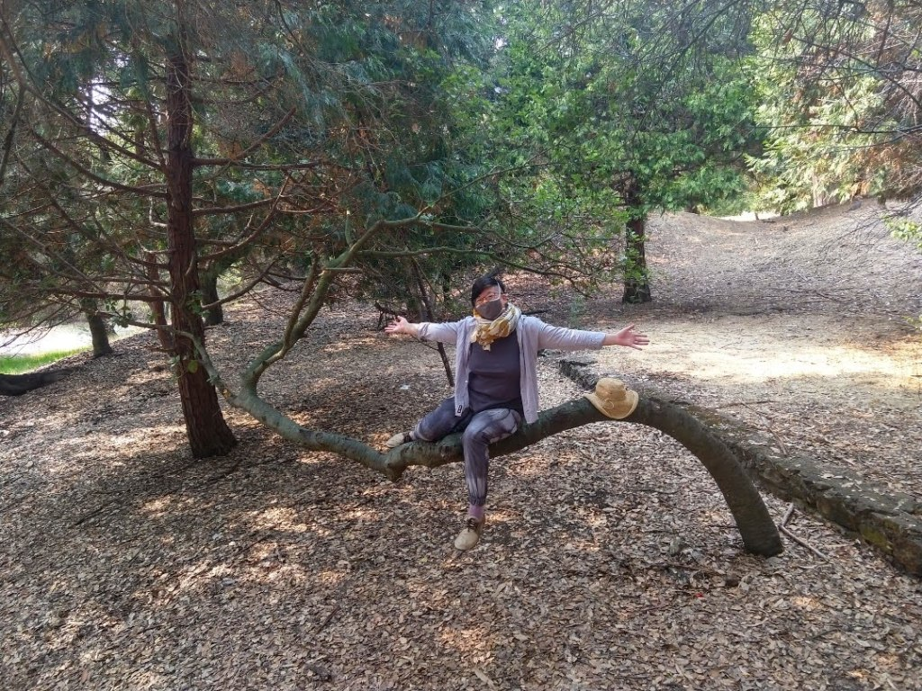 Short-haired Asian American person sitting on a curved tree trunk in Joaquin Miller Park