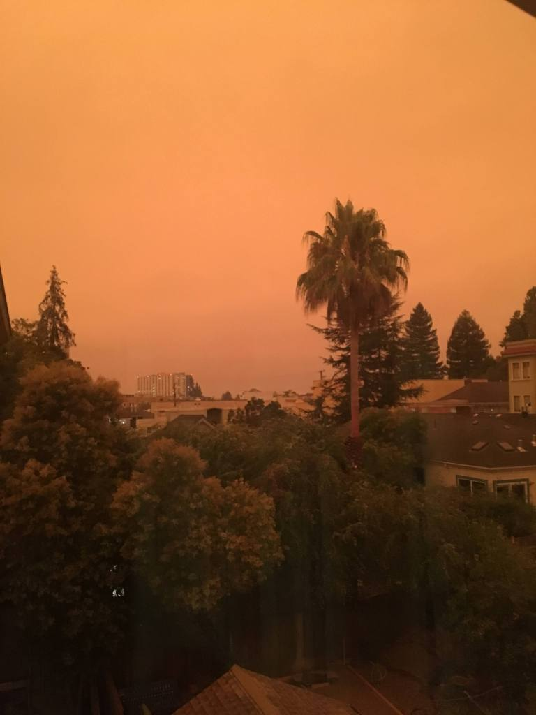 Orange sky over backyards and city buildings