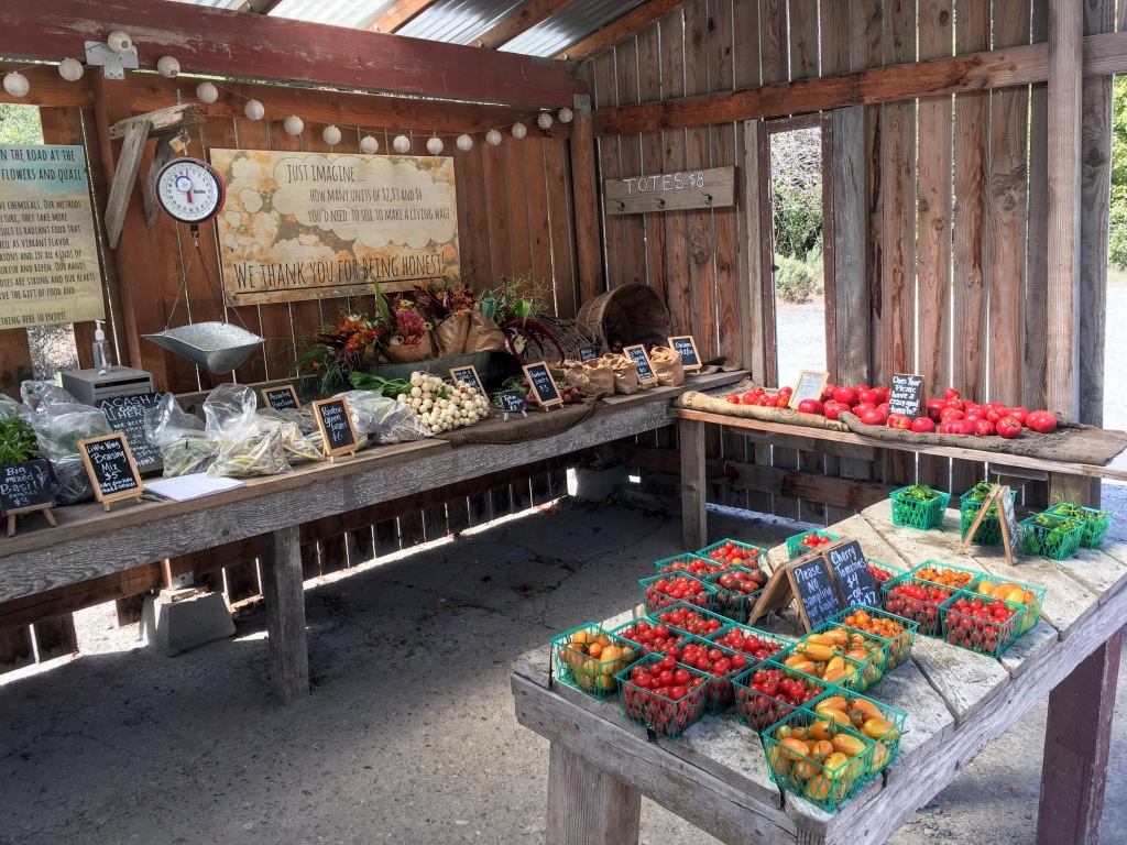 Little Wing Farmstand, Point Reyes Station