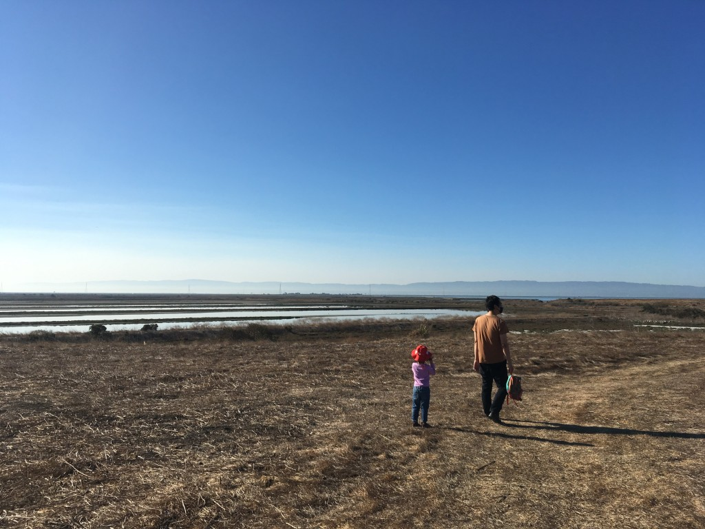 An adult and a small child walk in an empty field with ponds and mountains in the distance