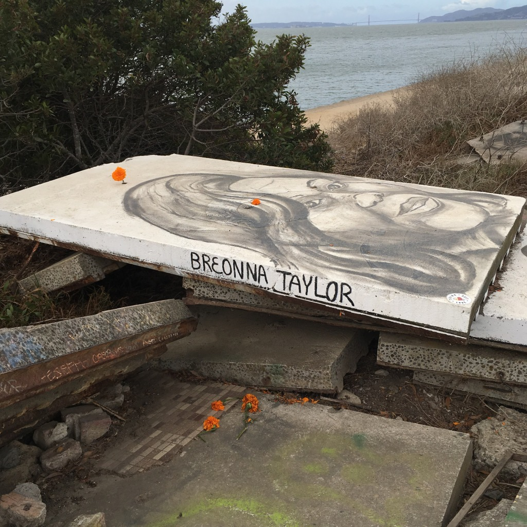 Public art at Albany Beach honors Breonna Taylor