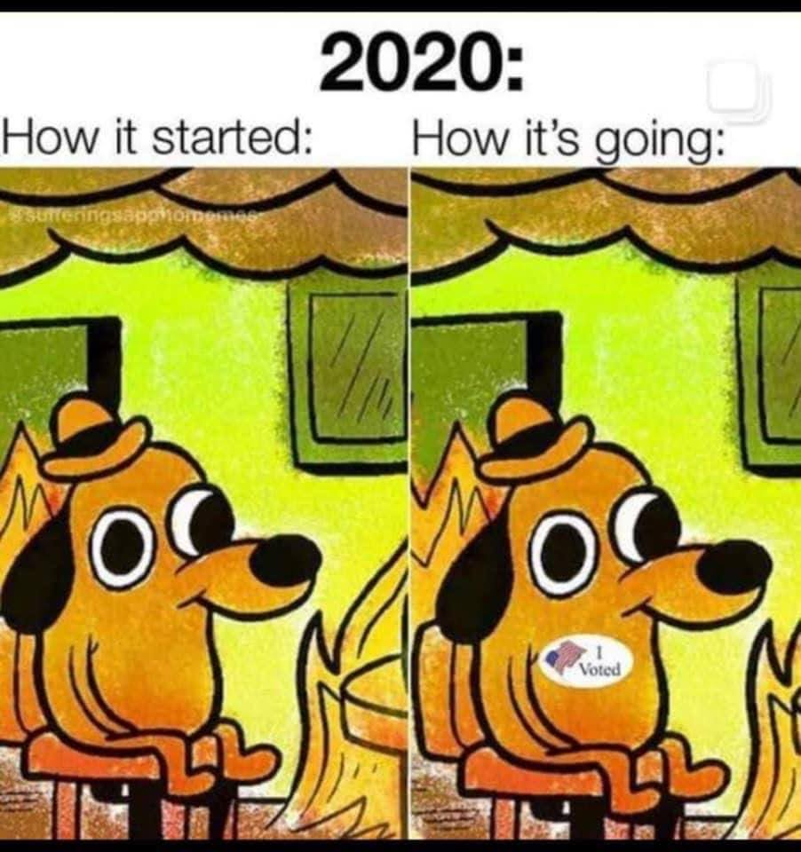 "Meme showing a cartoon dog apparently unfazed by flames around it. Caption reads: ""2020: How it started: How it's going:"" The side-by-side images are identical except one has an ""I Voted"" sticker."